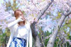 ☆彡みことの桜まつり☆彡