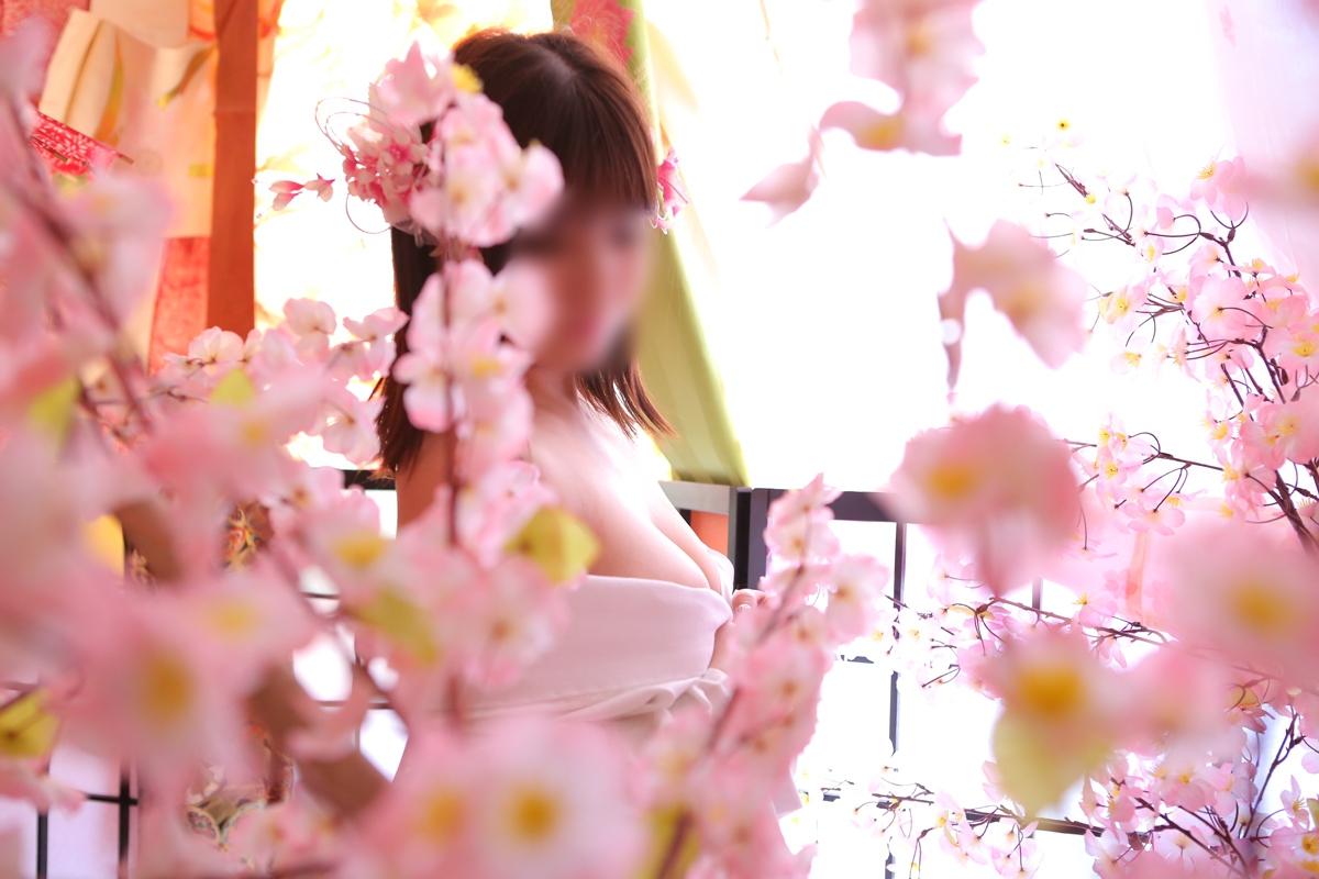 ☆彡春一番♪桜と着物でひな祭り☆彡
